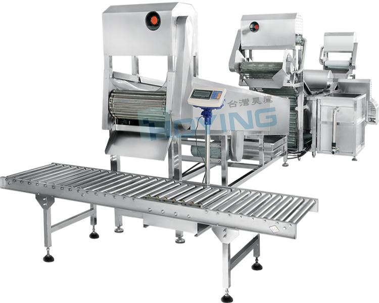 全自动连续式根菜类洗菜机HYTW-307